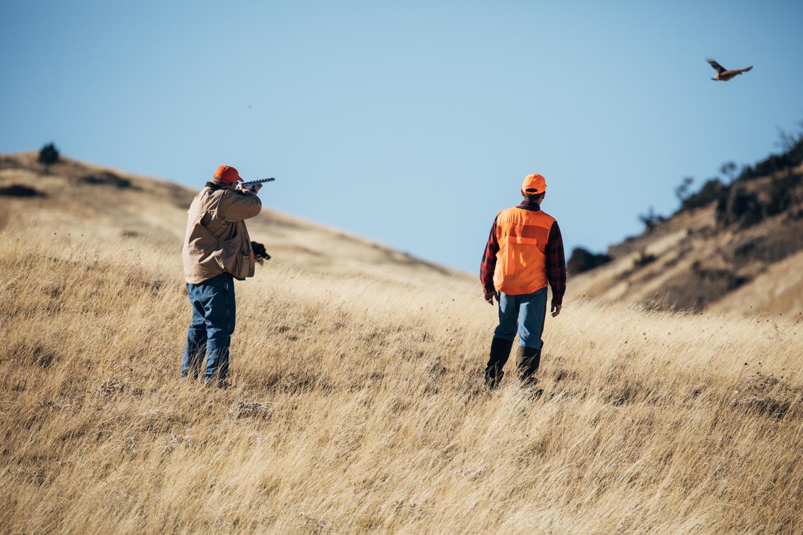 Full service pheasant ranch