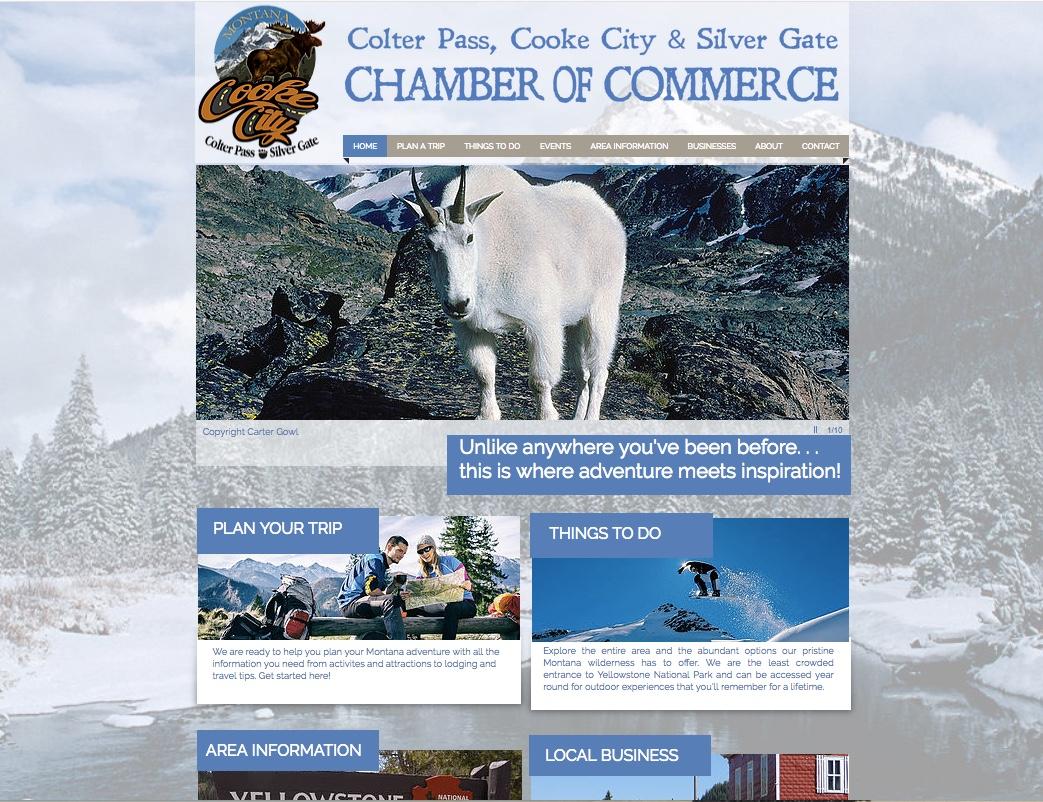 Chamber Websites