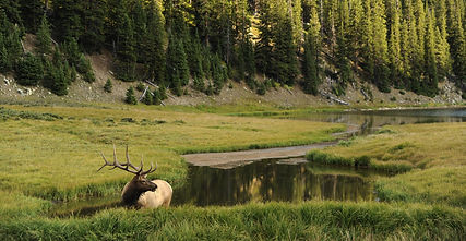 Montana Photography Locations