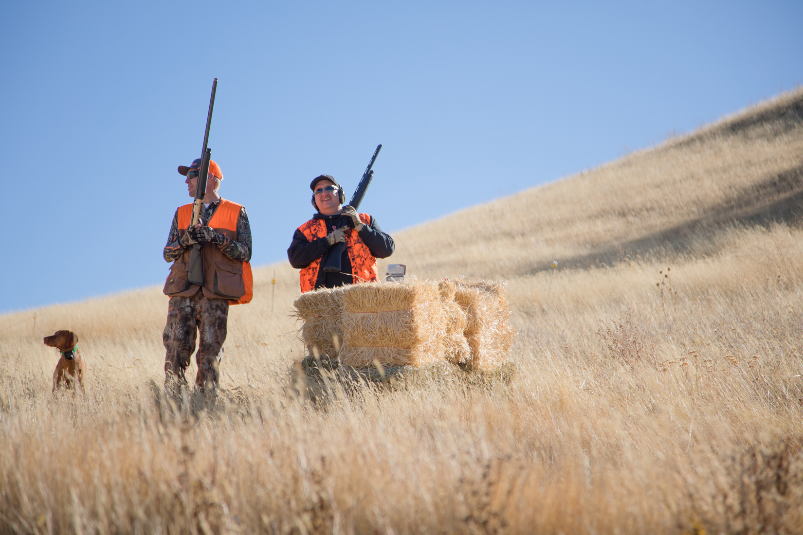 Taking Aim in Montana