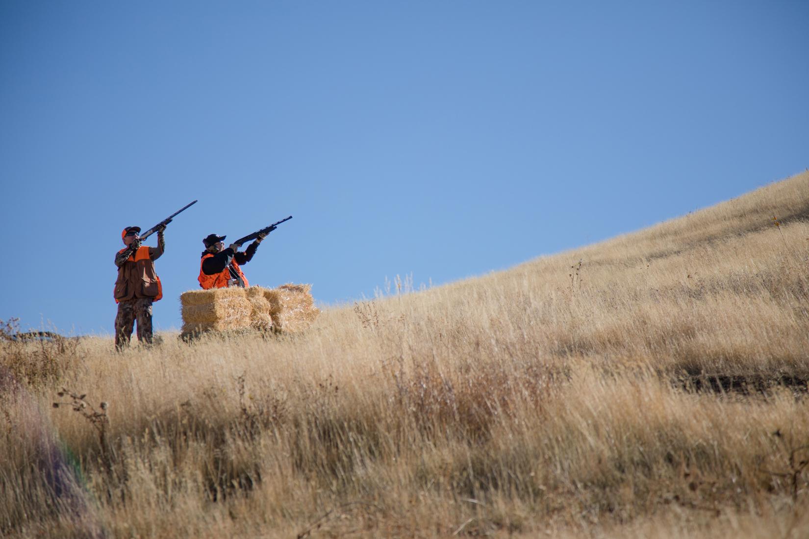 Guided Pheasant Hunting