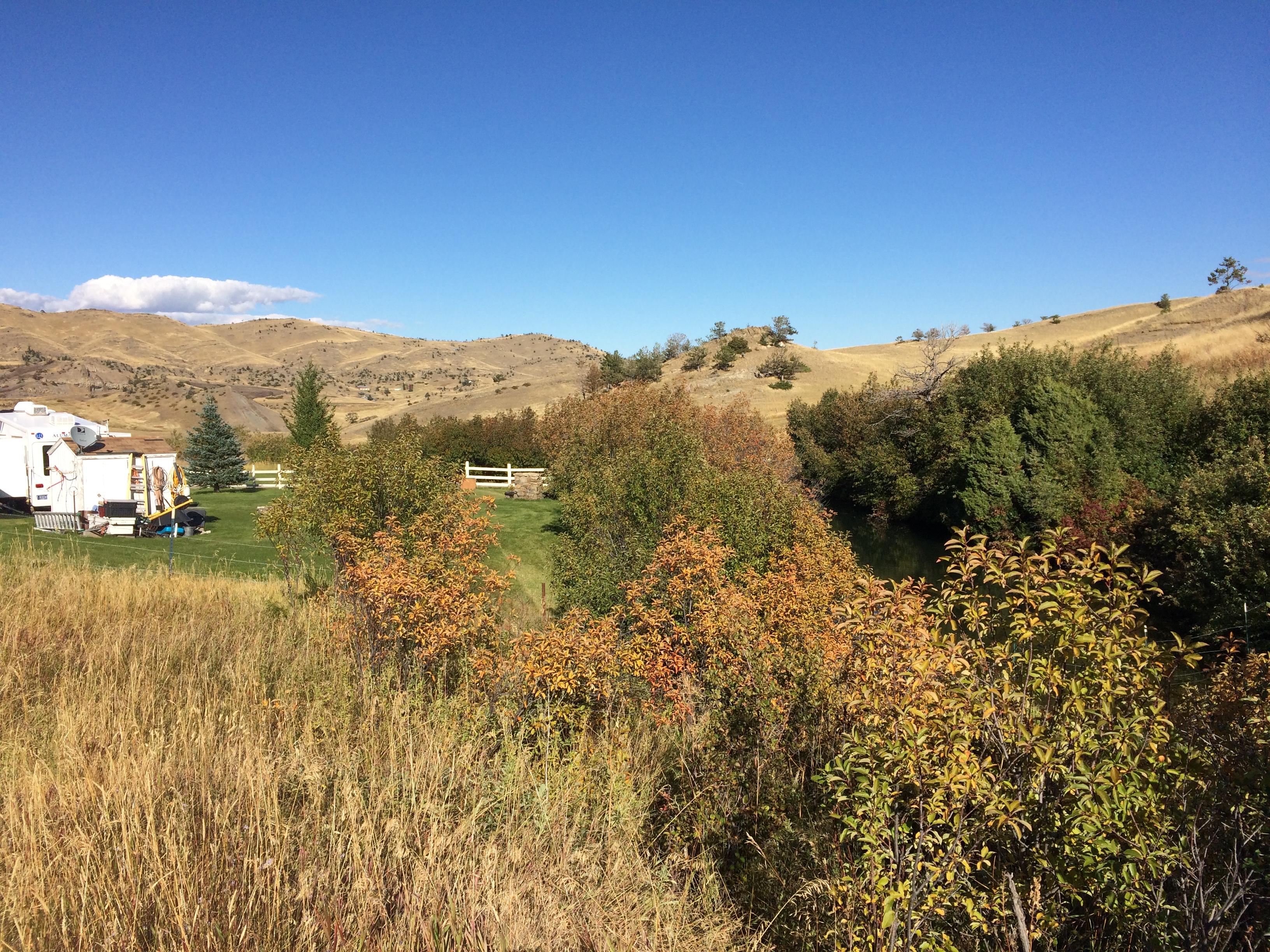 Wild Montana Guest Ranch