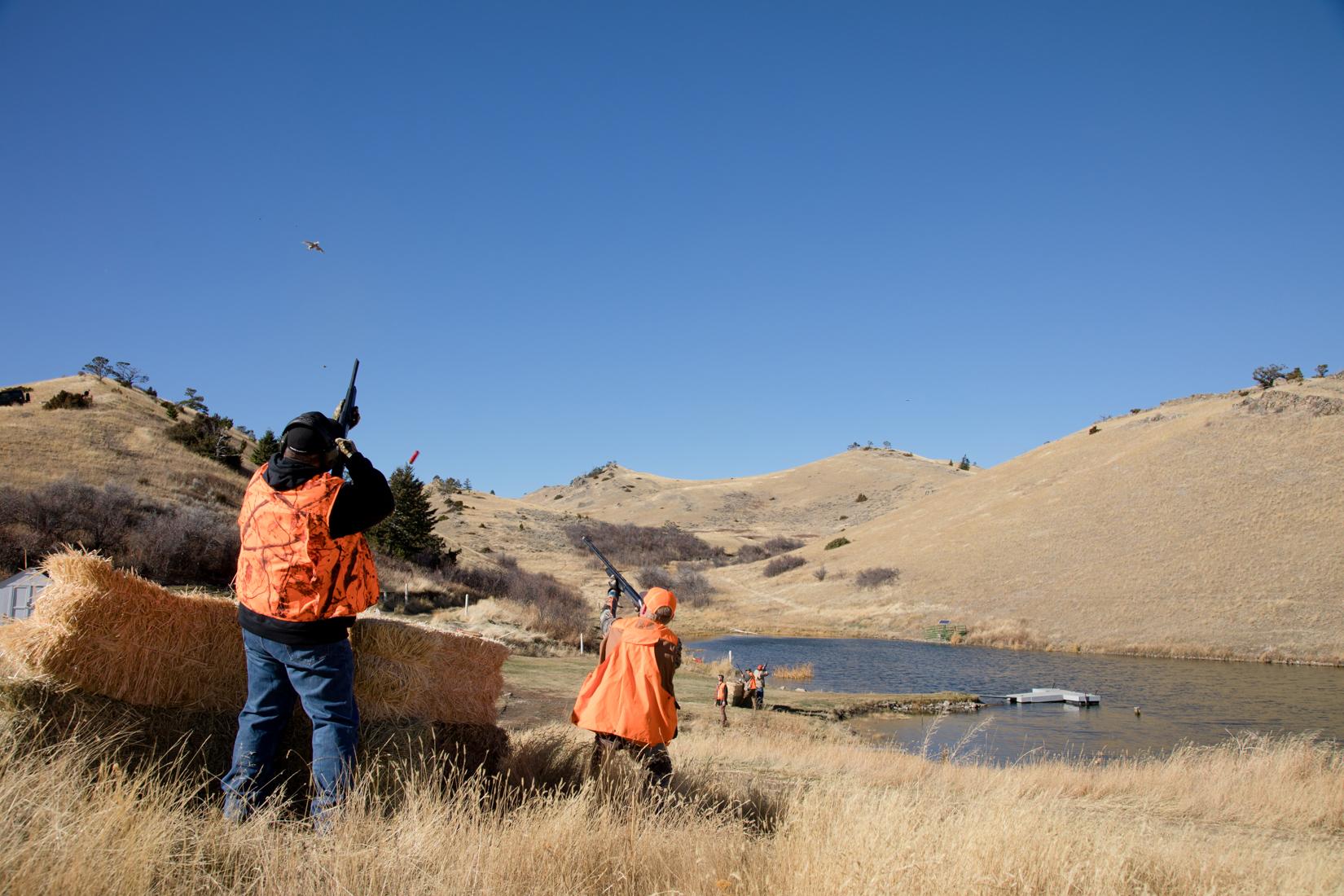Pheasant Preserve in Montana