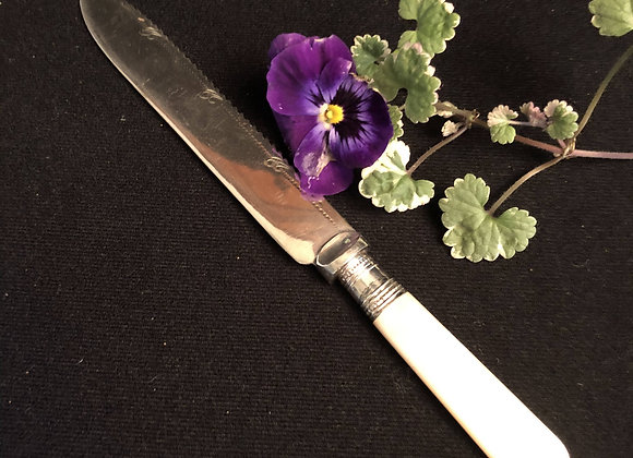 Mother of Pearl Handled Cake Knife