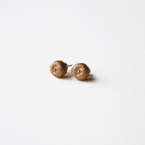 Orecchini Piccolo Occhio Grande Vista - Small Eye Earrings