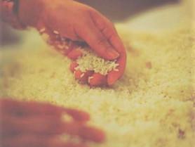 息子を救った日本古来の発酵を世界に伝える!