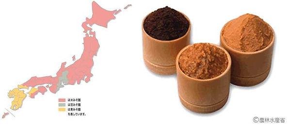 味噌-2.jpg