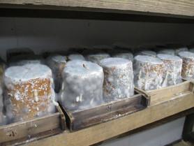 チーズの香りがする味噌は妥協をゆるさぬ木曽職人の贈り物-Part2