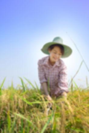 Asian traditional Thai farmer woman smil
