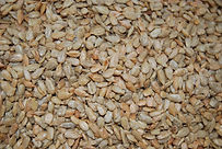 Raw Sunflower Kernels.jpg