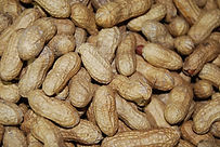 Roasted Peanuts in the Shell.jpg
