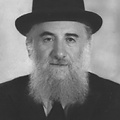 אילן הרב מרדכי.png