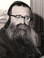 קרויזאר הרב דב מאיר.png