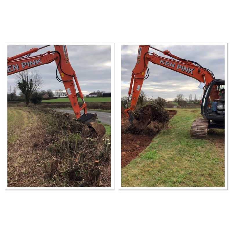 How to move a hedge using thirteen ton digger