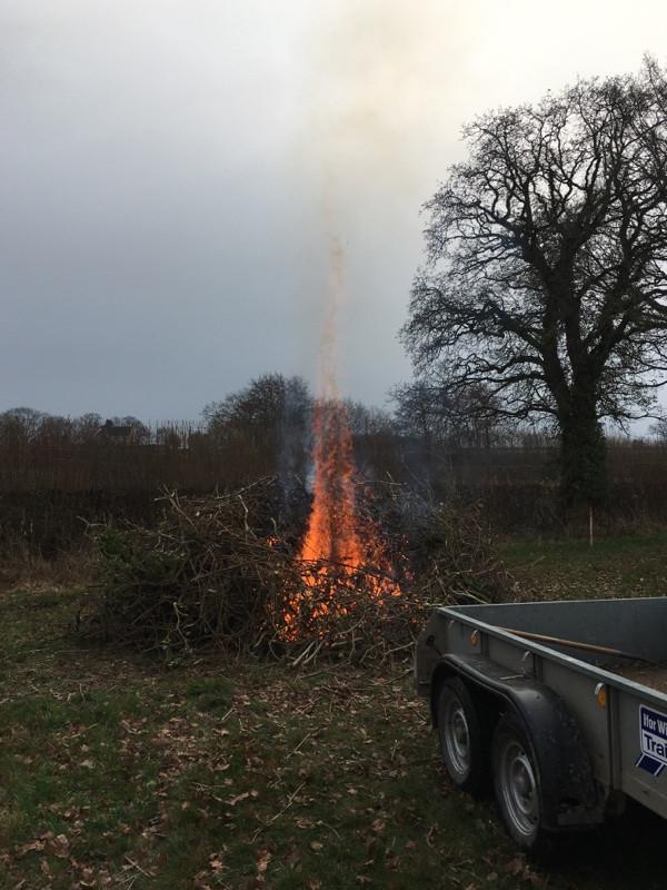 elemental fire tounges of flame brash burn