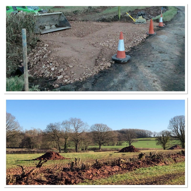 New entrance and translocated hedge at Cwtch Cabins & Camping with large piles of topsoil or molehills