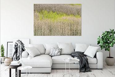 emergence_livingroom.jpg