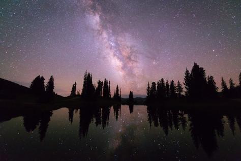 Stars in Paradise