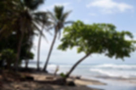 samasati beach.jpg