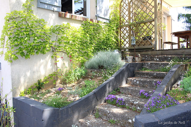 Rocaille de l\'escalier | Fête des mères | Le petit jardin des vignes