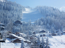 Piste ski