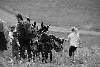 Randonnée avec ânes de bât