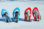 Location de raquettes à neige