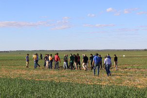 High analysis fertilisers with Dr Peter Keating, Bioscience.