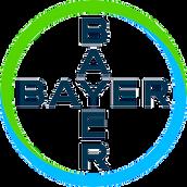 Bayer logo - no background.png