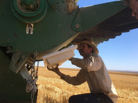 Member in Focus – Harvest Loss Review with Scott Bowman