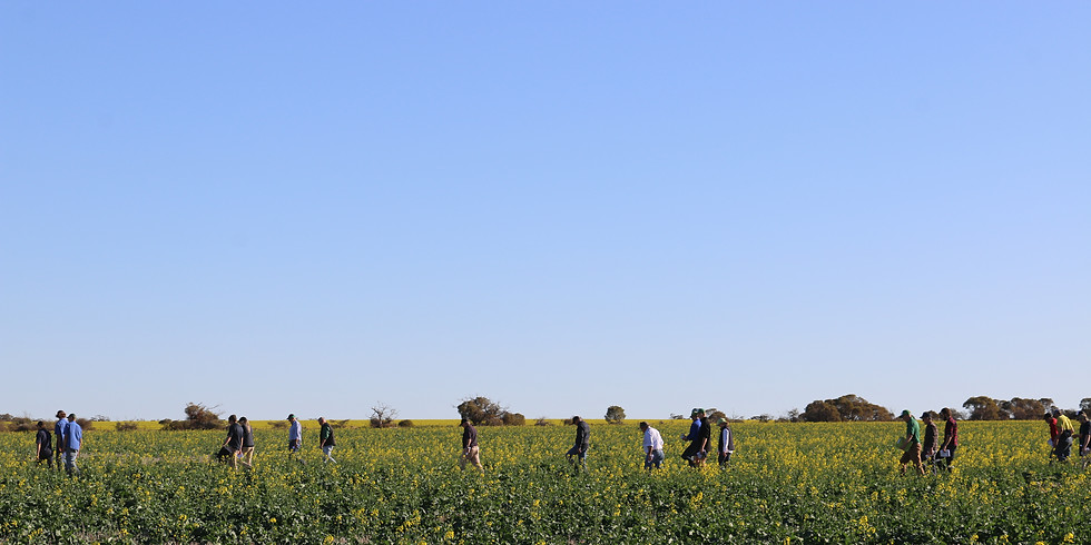 Post Seeding Field Walk