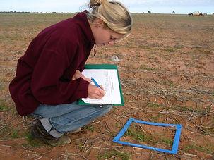 Flora-Crop-Sequencing-2.jpg