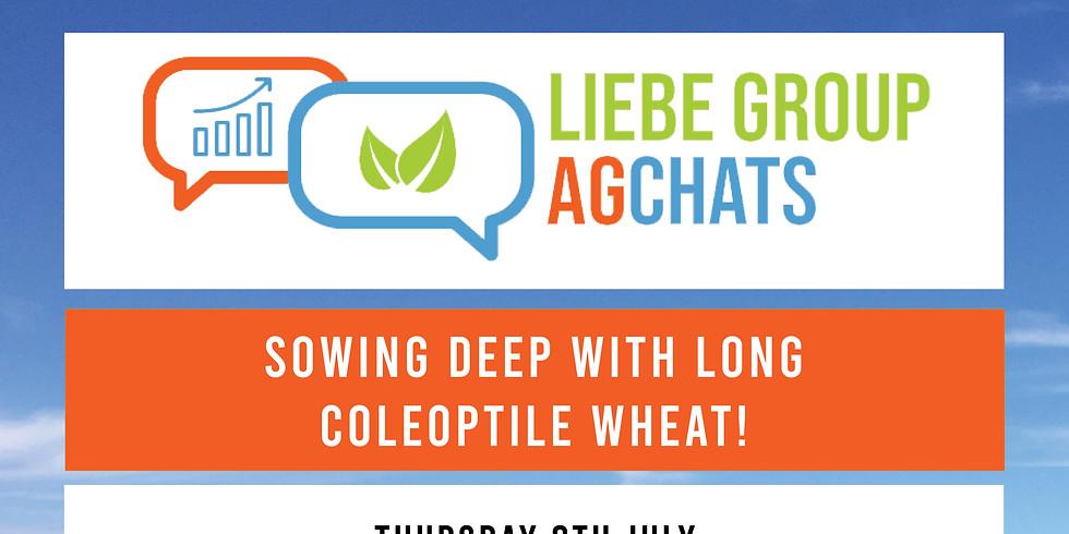 Utilising Long Coleoptile Varieties within your Farming System