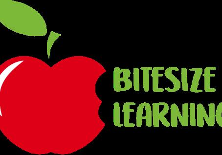 Bitesize Learning: Setting up for Success