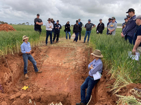 Local Research on Display at Spring Field Day