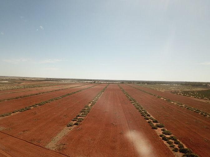 Carters Soil Sampling Gen Y -2.jpg