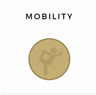 mobility def .webp