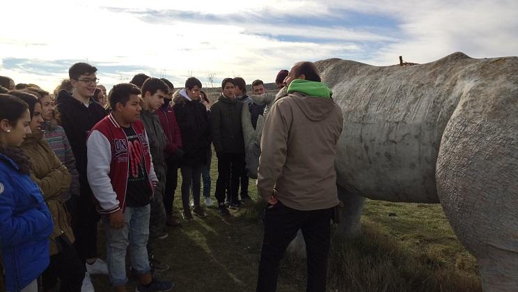 BurgosAtapuerca17_7