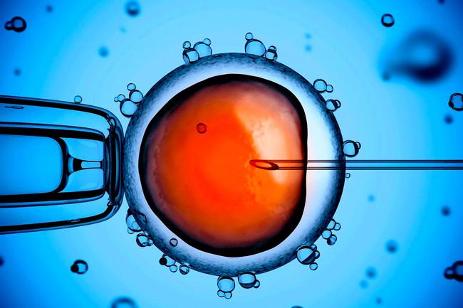 Δημοσίευση του Nature αποκαλύπτει την πρώτη γονιδιακή παρέμβαση σε ανθρώπινο έμβρυο - Για  επικίνδυν
