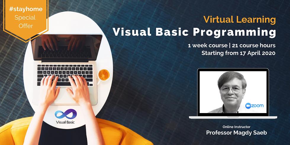 Learn Visual Basic Programming