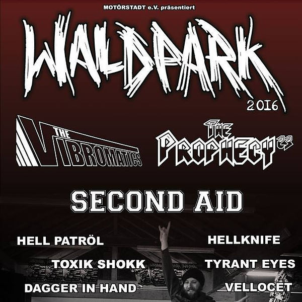 Waldpark Open Air - 2016