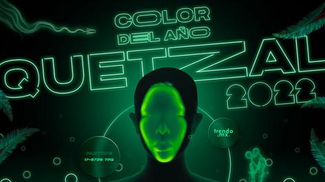 Quetzal Neon 2.jpg