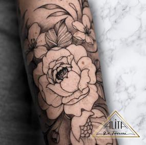 alita_de_ferrari_close_up_fine_line_peon