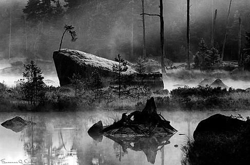 Spöklig morgon