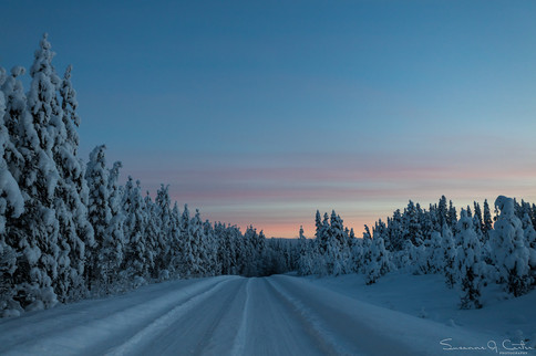 Vinterväg i skymning