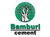 Bamburi%20Cement%20Limited_edited.jpg