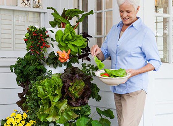 Juice Plus Aeroponic Tower Garden Home System