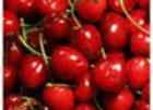 Cherry Organic Dark Balsamic Vinegar