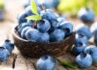 Blueberry Organic Balsamic Vinegar