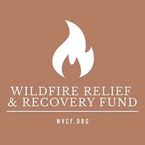 wildfire-color-block-light-logo.png